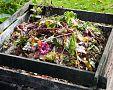 Jak urychlit domácí kompostování? Bactisan jako urychlovač má dobré zkušenosti