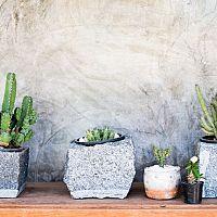Betonové květináče - hodí se do bytu i do zahrady