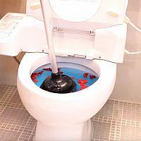Jak opravit ucpaný záchod?