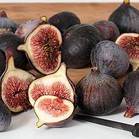 Plody figovníka
