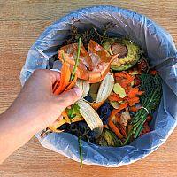 Odpadkové koše do kuchyně, dětského pokoje nebo na zahradu. Jak vybrat ten nejlepší?