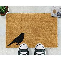 Rohožka Artsy Doormats Bird,40x60cm
