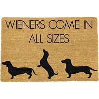 Rohožka Artsy Doormats Weiners Come In All Sizes, 40 x 60 cm