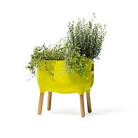 Zelená pěstební nádoba Plastia Low Urbalive