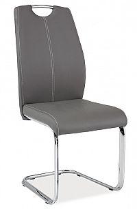Smartshop Jídelní čalouněná židle H-664, šedá