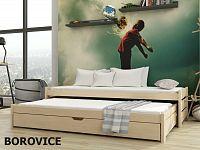 Smartshop Postel s přistýlkou ANIS 90x200 cm, masiv borovice/barva:..