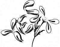 Samolepící dekorace Květina 2, matná černá