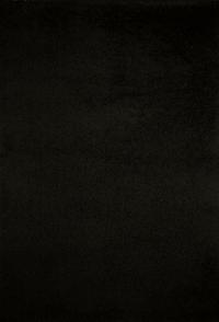Koberec SHAGGY 1074 80x150