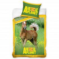 Tip Trade Bavlněné povlečení Animal Planet hříbátko, 140 x 200 cm, 70 x 90 cm