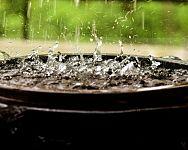 Nádrže na dešťovou vodu vám ušetří peníze. Zachytávačem může být i sud