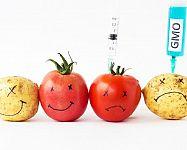Co je to diagnostika potravin a jak si vybrat ten nejlepší přístroj?