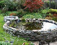 Jak navrhnout a zrealizovat zahradní jezírko svépomocí?