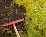 Mech místo trávy? Pomůže postřik, hrábě na mech v trávníku i zelená skalice