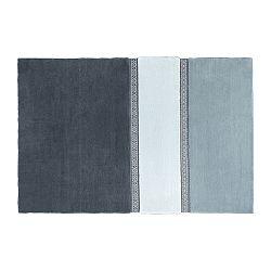 Modrý koberec EMKO Lietuva