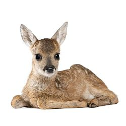 Nástěnná samolepka Dekornik Deer Lucy, 67x55cm