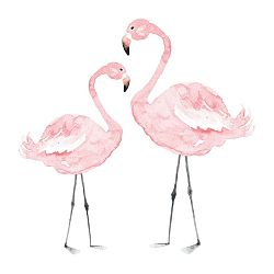 Nástěnná samolepka Dekornik Flamingos, 55x55cm
