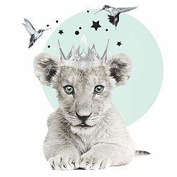 Nástěnná samolepka Dekornik Lion King