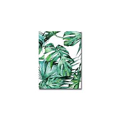 Obraz Canvart Jungle, 28 x 38 cm