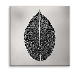 Obraz Styler Canvas Silver Uno Black Leaf, 65 x 65 cm