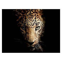 Obraz Styler Leopard, 100 x 75 cm