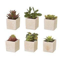 Sada 6 umělých dekorací ve tvaru exotických kaktusu Unimasa