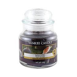 Vonná svíčka Yankee Candle Divoký Fík, doba hoření 25 - 40 hodin