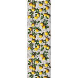 Vysoce odolný běhoun Webtappeti Limoni, 58x240cm