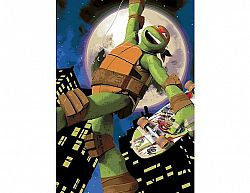 Dětský koberec Turtles Želvy Ninjas 01 Mike Skate
