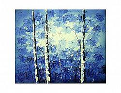 Obraz - Břízky modré