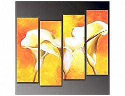 Vícedílné obrazy - Žluté kaly