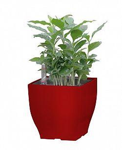 G21 Cube 57650 Květináč mini 13.5cm, červený