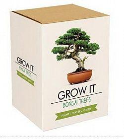 Grow it, Bonsai