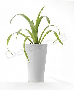 Samozavlažovací květináč G21 Trio mini bílý 26cm