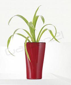 Samozavlažovací květináč G21 Trio mini červený 26cm