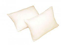 Forbyt, Výplň do polštáře, bílý, 40 x 60 cm, čtverec