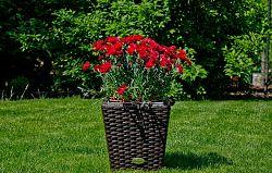 Bello Giardino Zahradní květináč z technoratanu hnědý