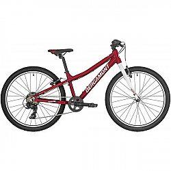 Bergamont REVOX 24 LITE - Dětské horské kolo