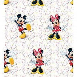 AG Art Dětská fototapeta Mickey a Minnie, 53 x 1005 cm