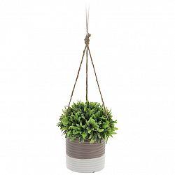 Koopman Umělá rostlina v závěsném květináči Livia, 15 cm