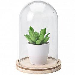 Koopman Umělá rostlina ve skle Pearlie, 19 cm