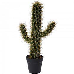 Koopman Umělý kaktus Safford, 54 cm