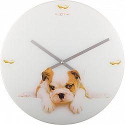 Nextime PUPPY nástěnné hodiny - PES, 43 cm