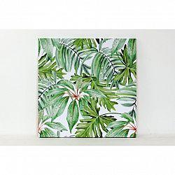 Obraz na plátně Rainforest, 50 x 50 cm