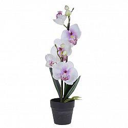 Orchidej v květináči bílá, 38 cm