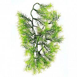 Umělá květina Asparagus, 40 cm
