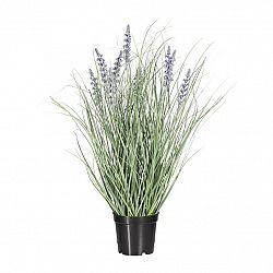 Umělá Levandule v květináči fialová, 55 cm