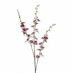 Orchidej 3018125mm-42