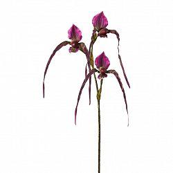 Orchidej 3019255mm-00