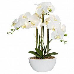 Umělá Rostlina Orchidej, 60cm, S Led Osvětl.