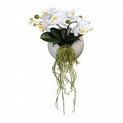 Umělá Rostlina Phalaenopsis Ii